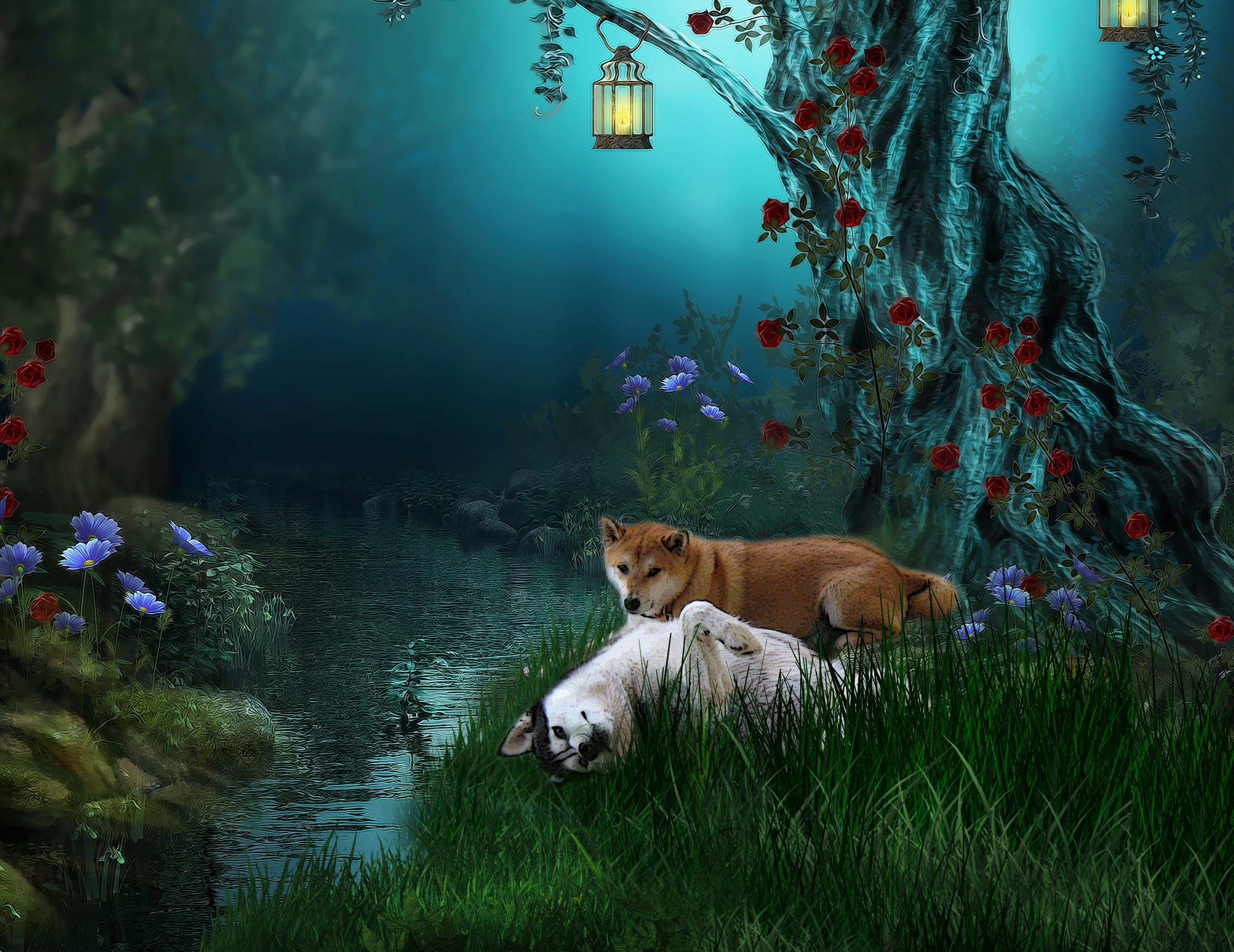 """Résultat de recherche d'images pour """"summer fantasy"""""""