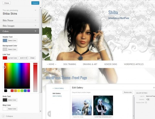 Screenshot of how to change colors in your WordPress wedding blog.