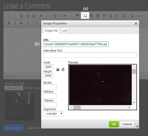 Screenshot of the Daz Forum Image Properties pop-up box.